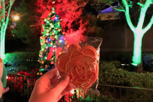 Tips for Mickey's Very Merry Christmas Party - Disney in your Day