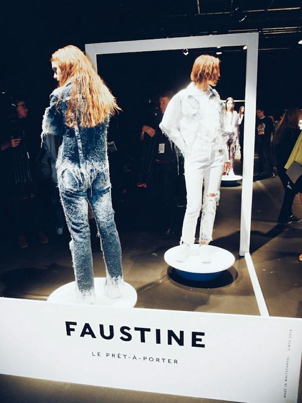 Faustine-Steinmetz-ss15-presentation-ICA 4