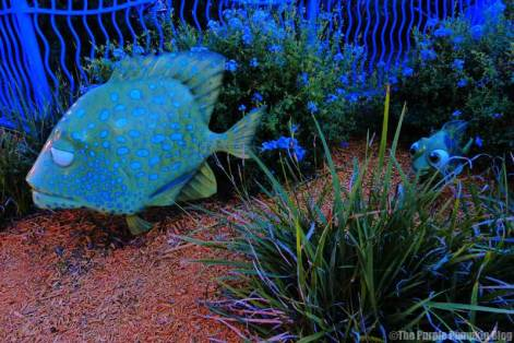 Disney's Art of Animation Resort - Finding Nemo Courtyard