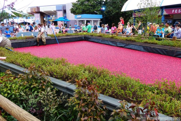 Epcot Food & Wine Festival 2015 - Ocean Spray Cranberry Bog