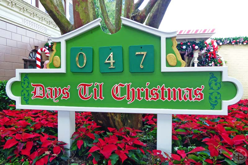 Christmas Decorations - Magic Kingdom