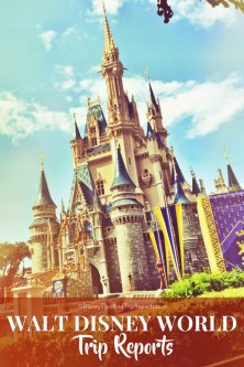Walt Disney World Trip Reports