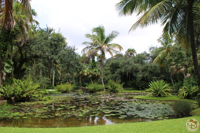 McKee Botanical Garden - Vero Beach - Florida ⋆ Disney Tips & Trip ...