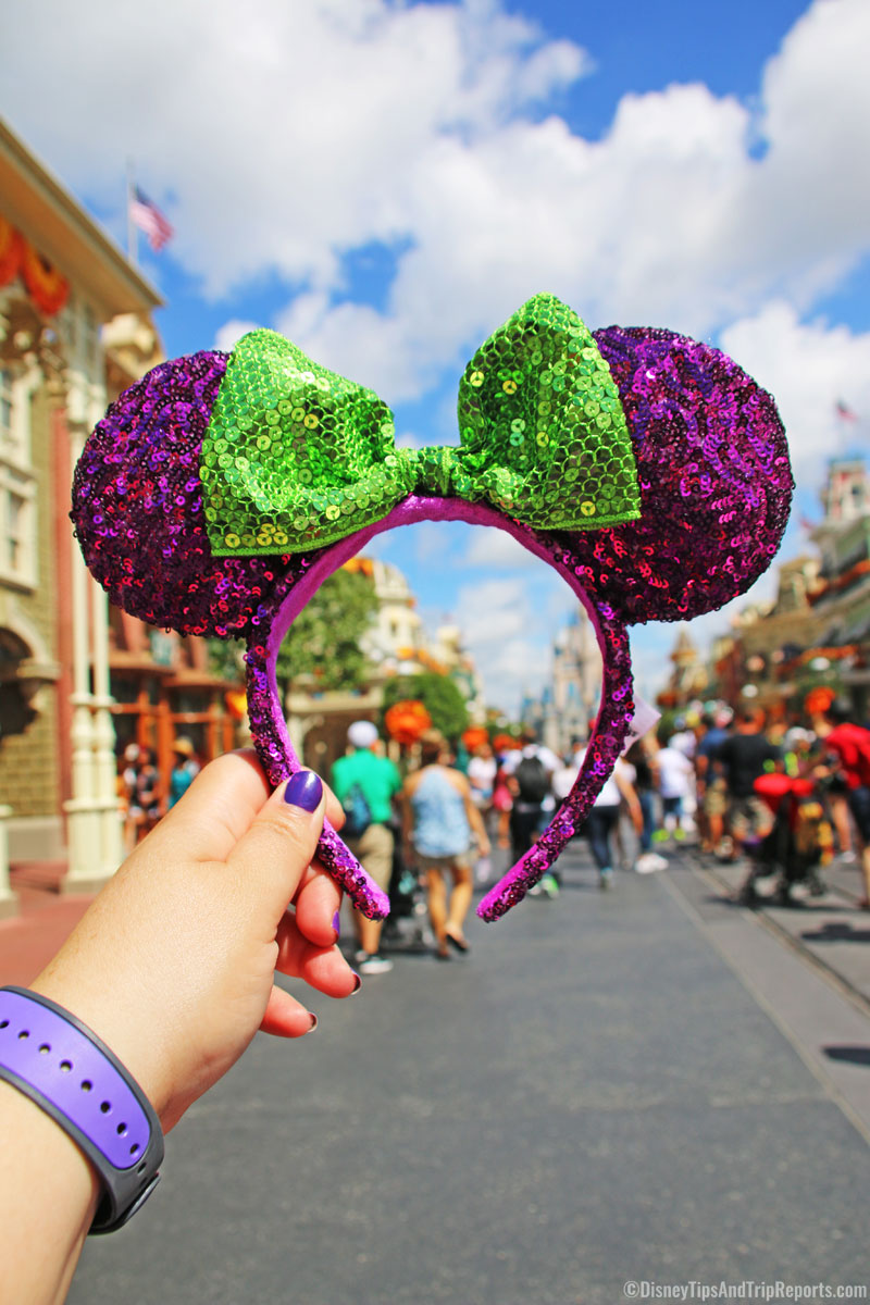 Magic Kingdom - Minnie Ears