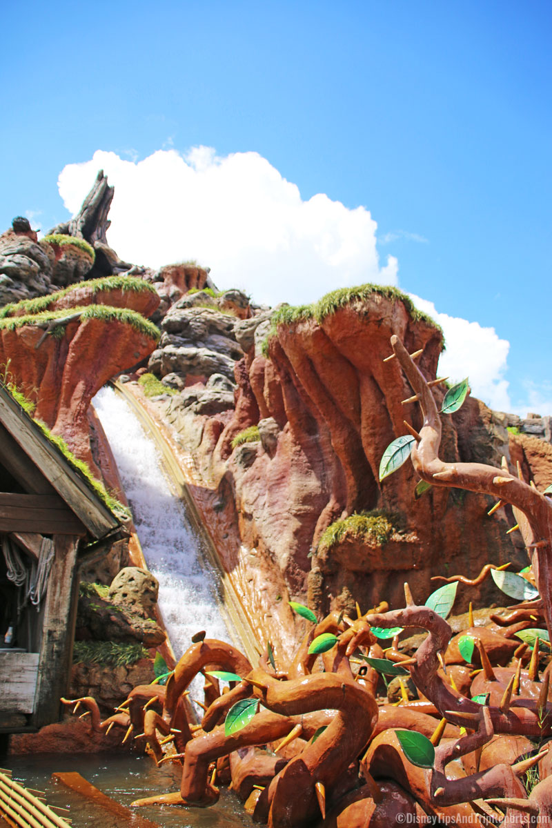 Magic Kingdom - Splash Mountain