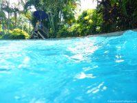 Aquatica - Roa's Rapids