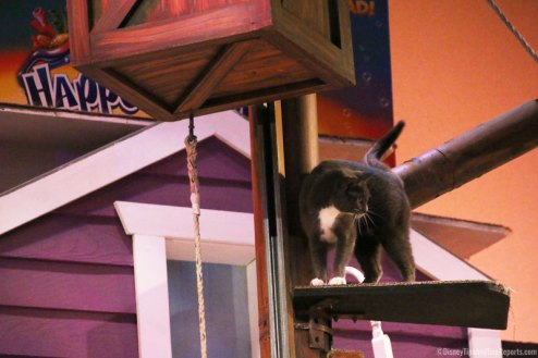 SeaWorld Orlando - Pets Ahoy