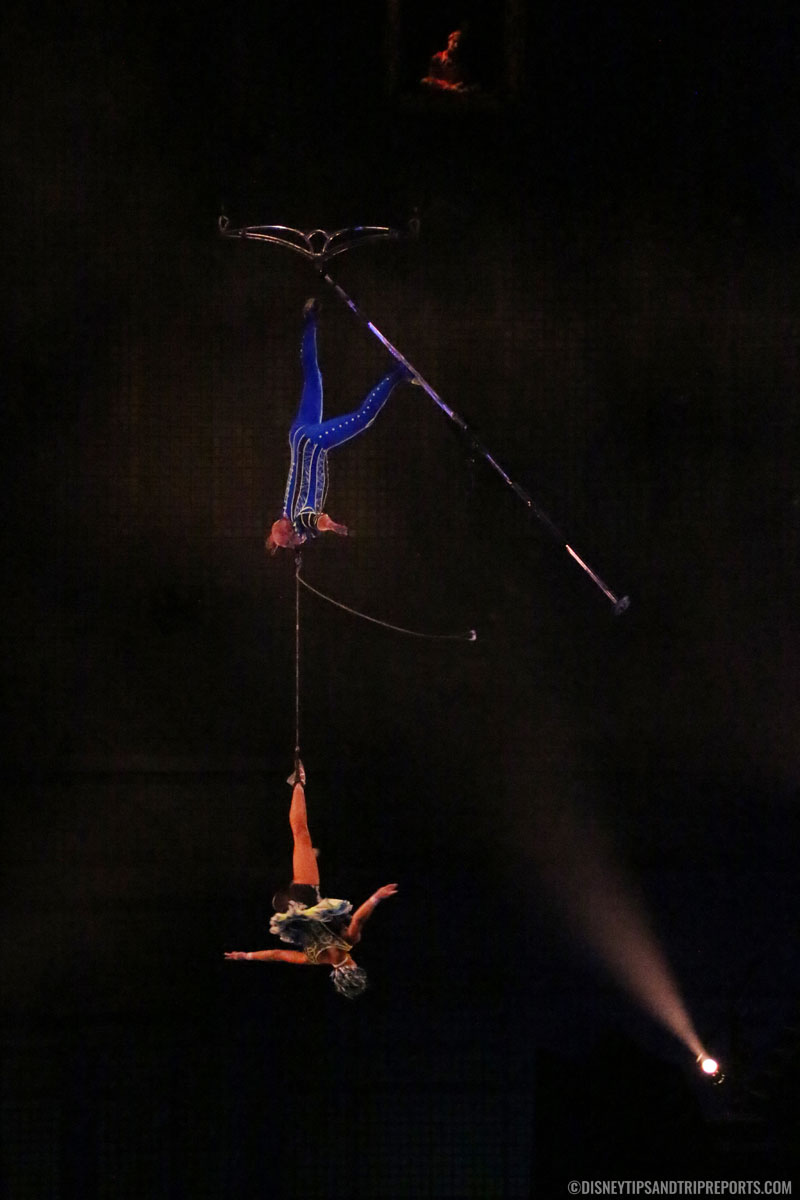 Arial Bamboo - Cirque Du Soleil - La Nouba