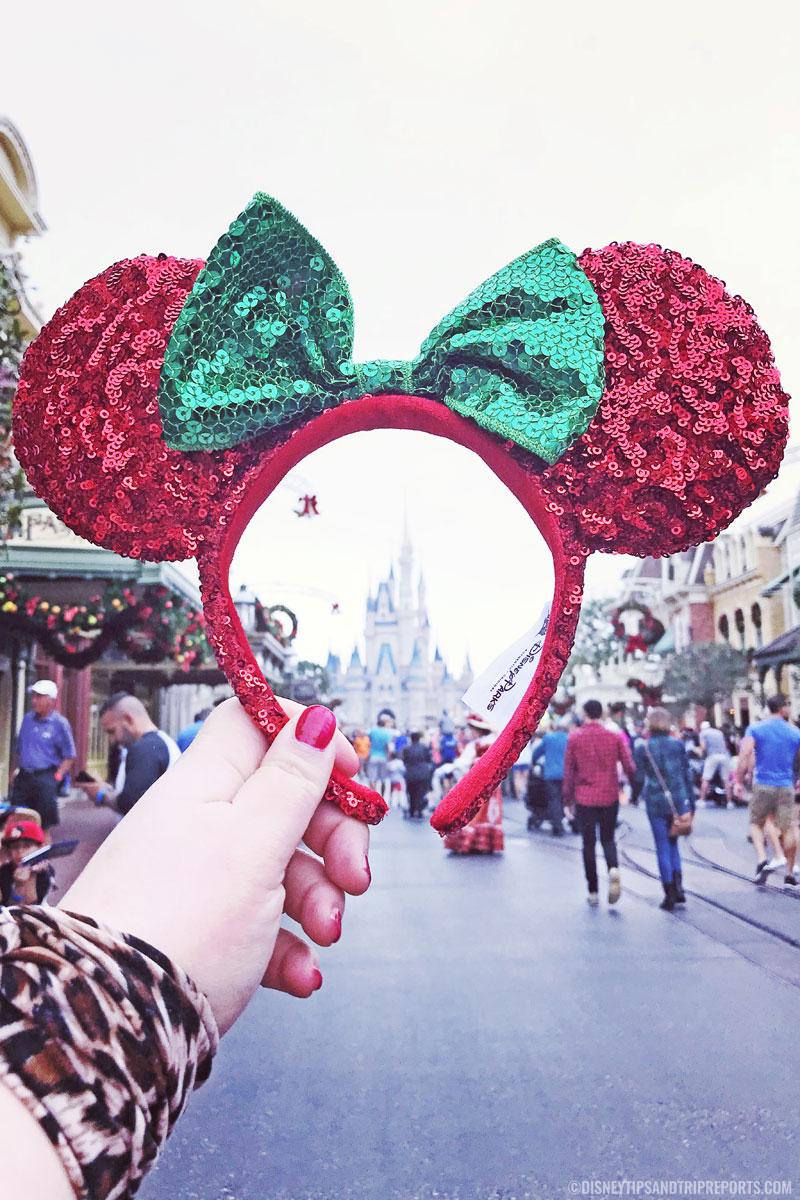Minnie Ears & Cinderella Castle