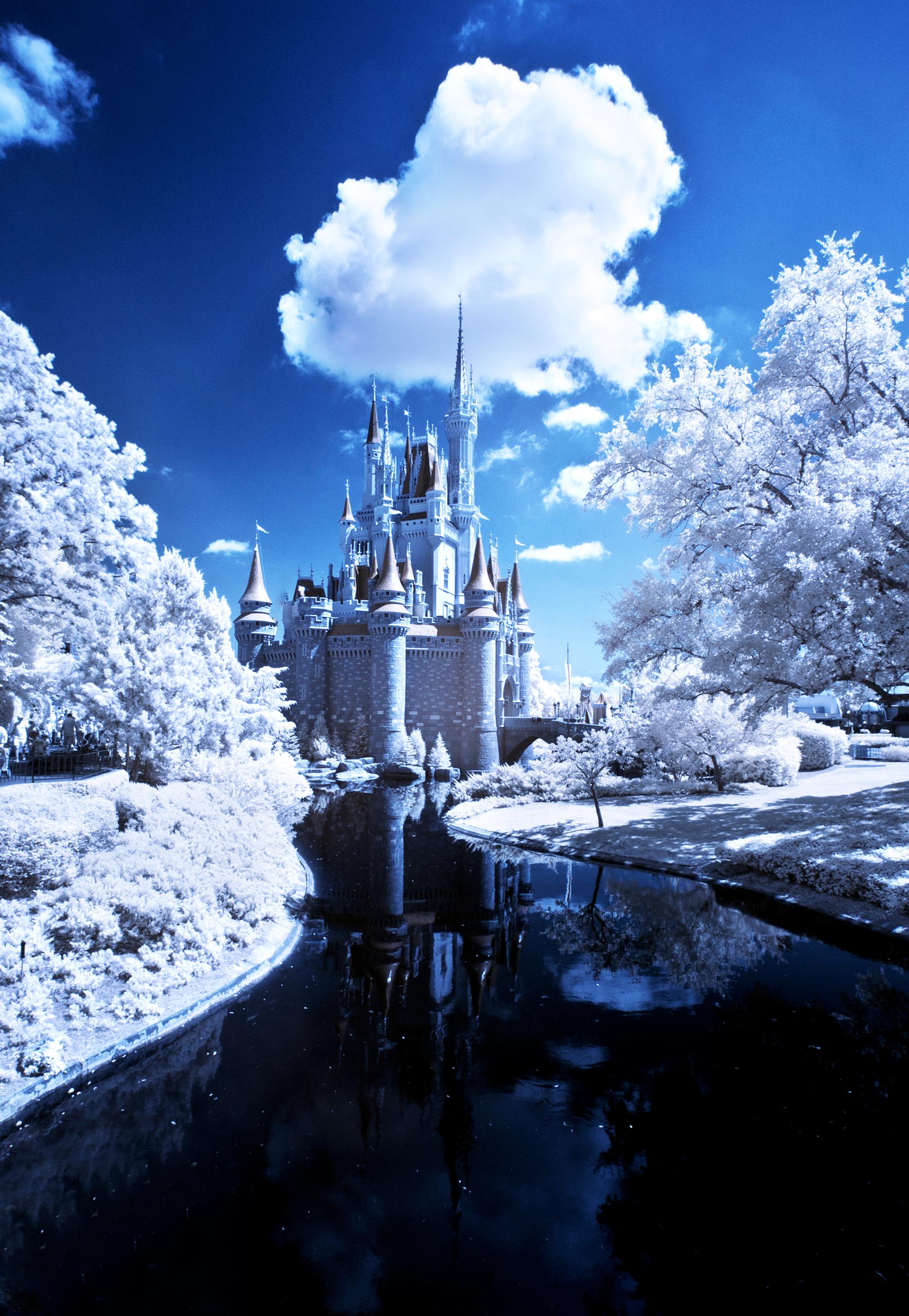 January At Walt Disney World