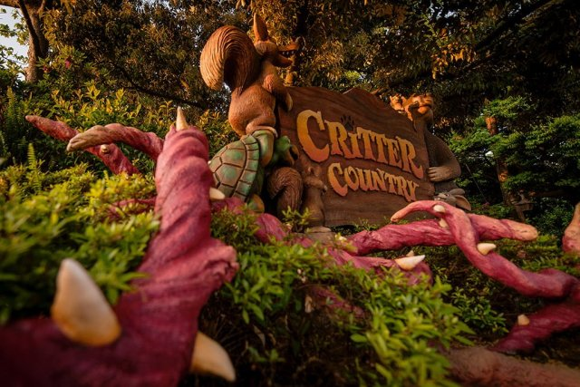 critter-country-sign-morning-light-tokyo-disneyland