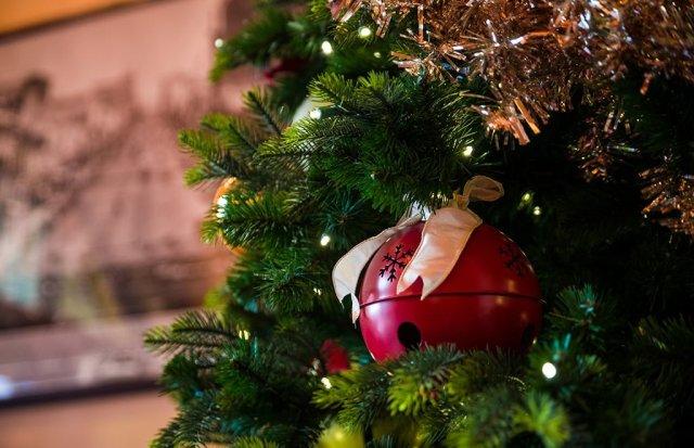 disneyland-christmas-2013-008