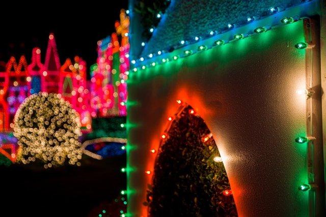 disneyland-christmas-2013-062