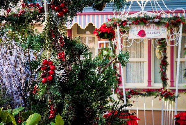 disneyland-christmas-2013-071