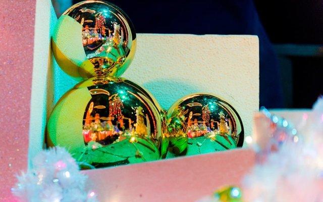 disneyland-christmas-2013-095