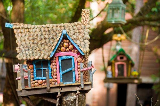 splash-mountain-birdhouse