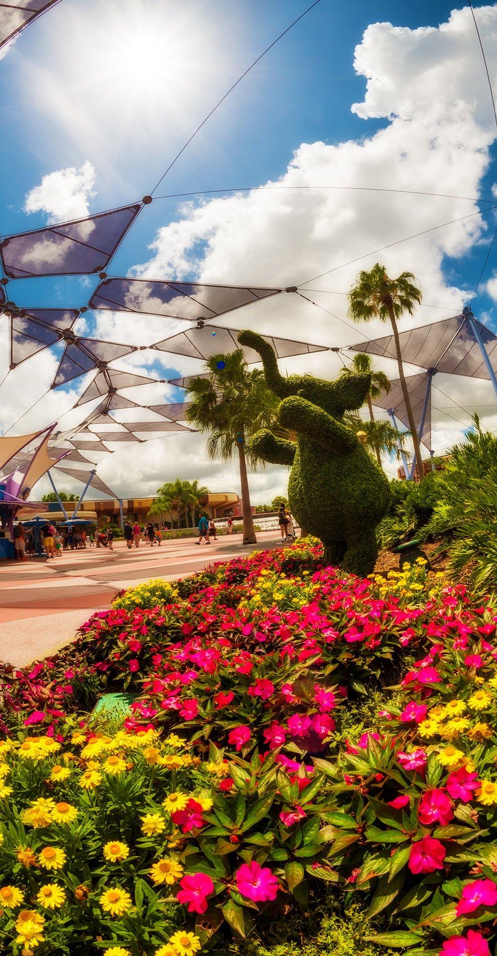 Walt Disney World Dining