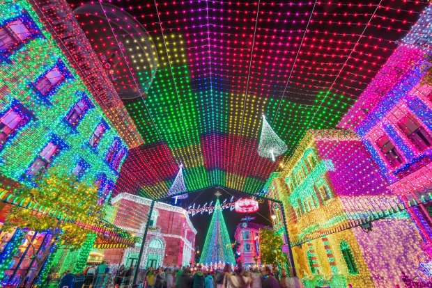osborne-lights-canopy-wide