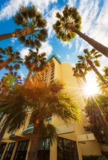 Paradise Pier Hotel - Disney Tourist