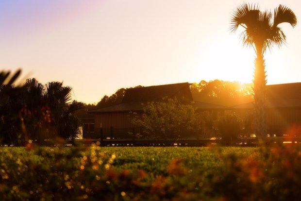 polynesian-bungalow-morning-soft-light