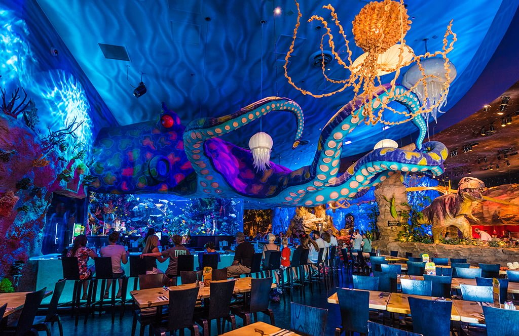 Best Family Restaurants At Disney Springs