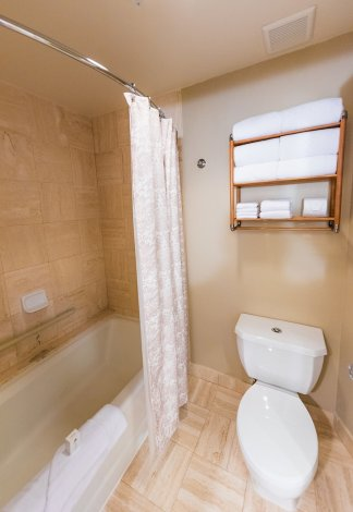 grand-floridian-shower-disney-world