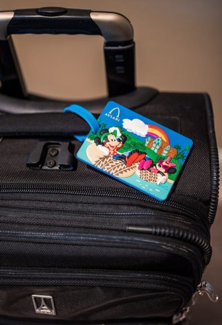 travel-luggage-recommendations-disney-europe-asia