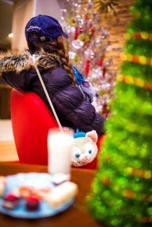 Hotels Of Disneyland Christmas -day Tour - Disney
