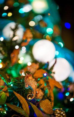 disneyland-hotels-christmas-decorations-032
