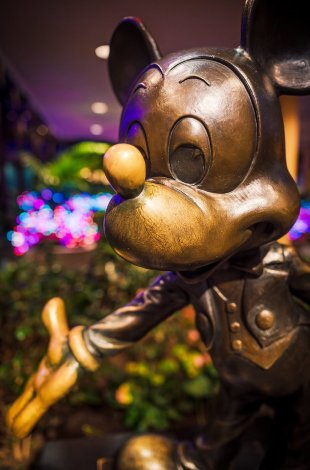 mickey-mouse-wide-sigma-24-35-f2