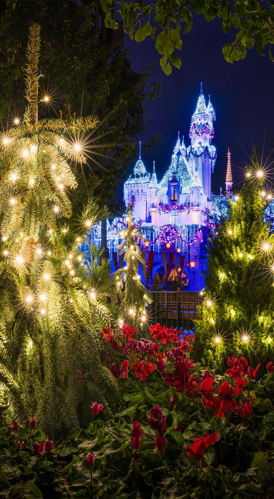 Walt Disney Christmas Wallpaper.Free Disney Iphone Wallpapers Disney Tourist Blog