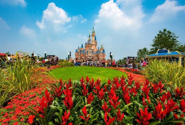 enchanted-storybook-castle-daytime-wide-bricker-puffy-clouds-flowers-shanghai-disneyland