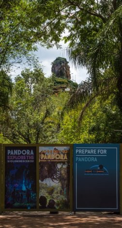 pandora-avatar-construction-animal-kingdom-walt-disney-world-004