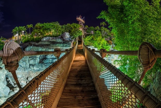 typhoon-lagoon-beach-bash-disney-vacation-club-night-rope-bridge