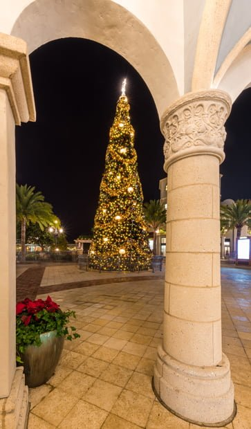 disney springs christmas tree arch town center