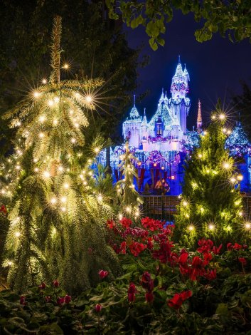 sleeping-beauty-winter-castle-evergreen-trees-starbursts-disneyland-bricker