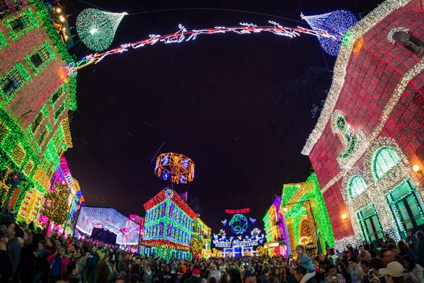 osborne-lights-trees-framed-crowds-high-dhs-wdw