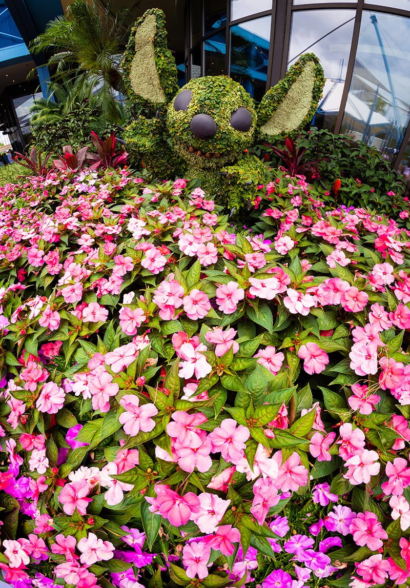 2019 Epcot Flower Garden Festival Guide Disney Tourist Blog