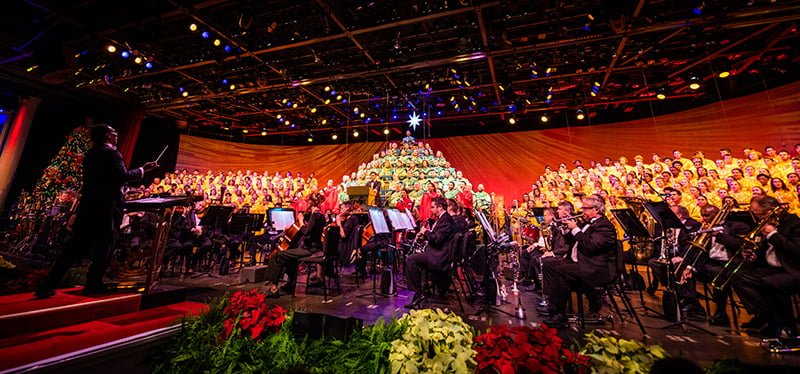 7 Things to Expect from the Disney Candlelight ...