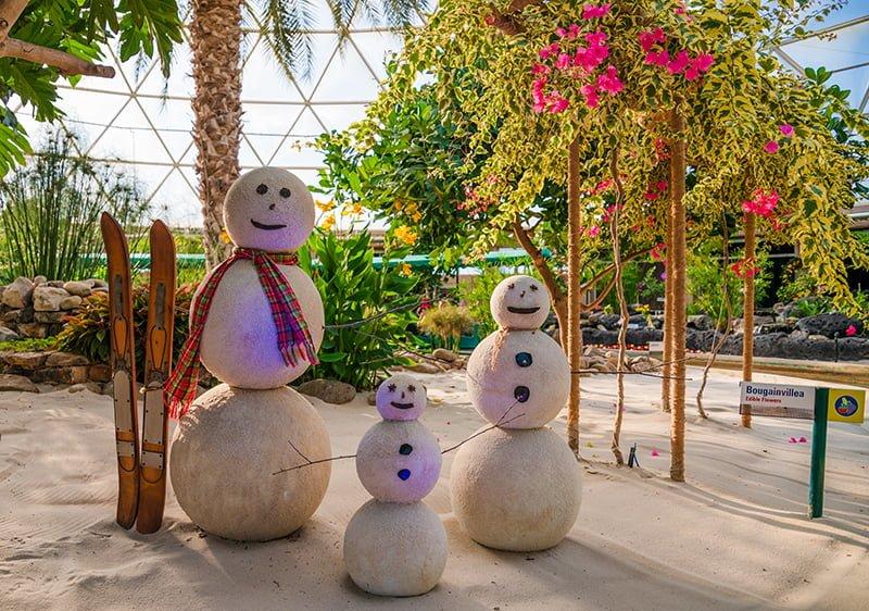 Epcot New Year's Eve Report - Disney Tourist Blog