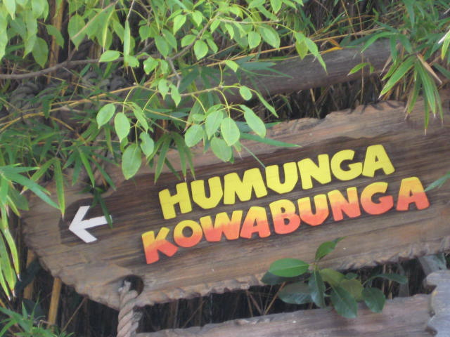 Humunga Kowabunga Disney Typhoon Lagoon Water Park Vacation Pictures Disney World Water Parks