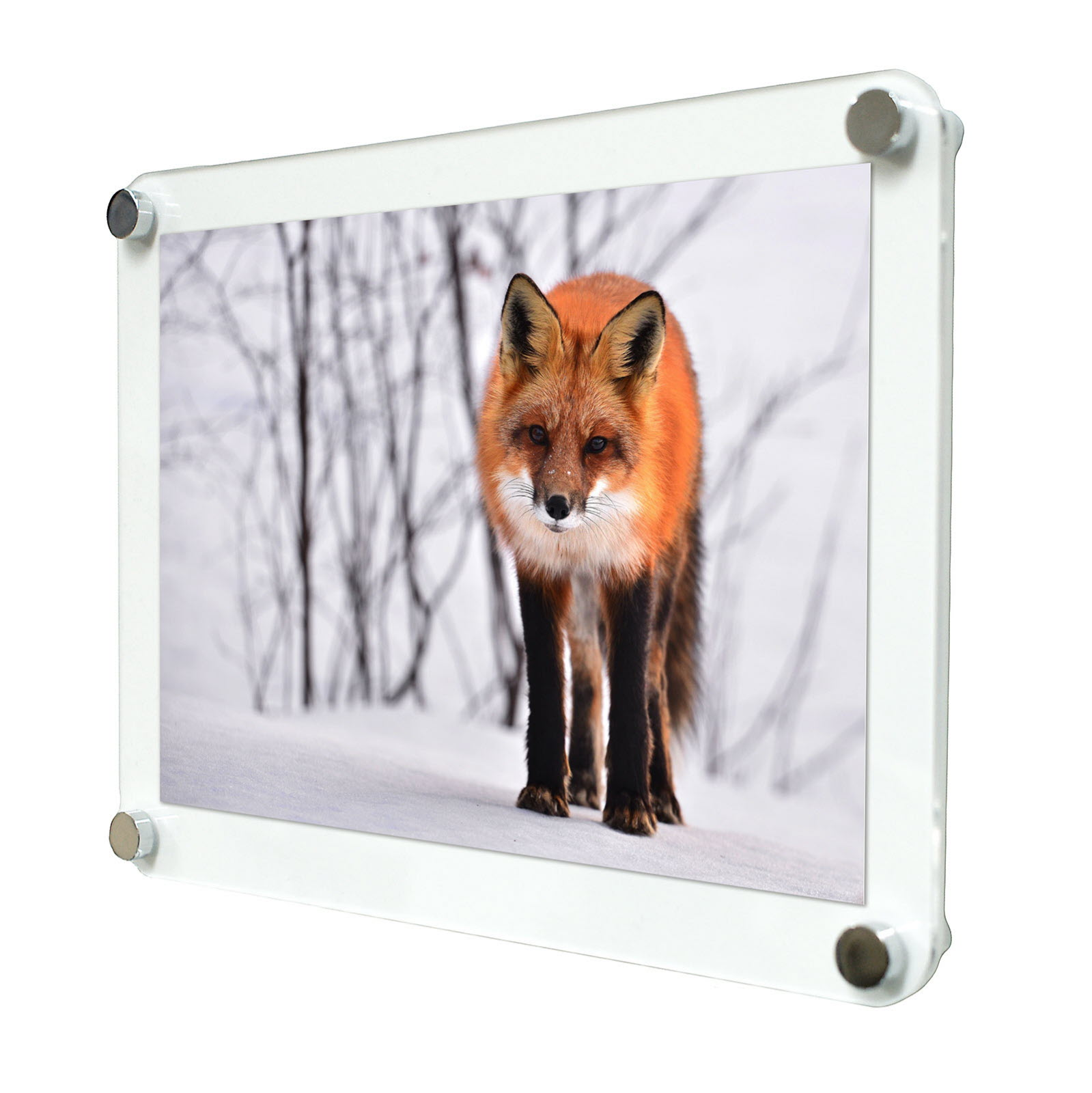 photo frame wall mounted a5 acrylic poster frame in 4 finishes dsfa5
