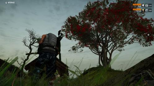 Ghost-Recon-Breakpoint-Arbre-rouge