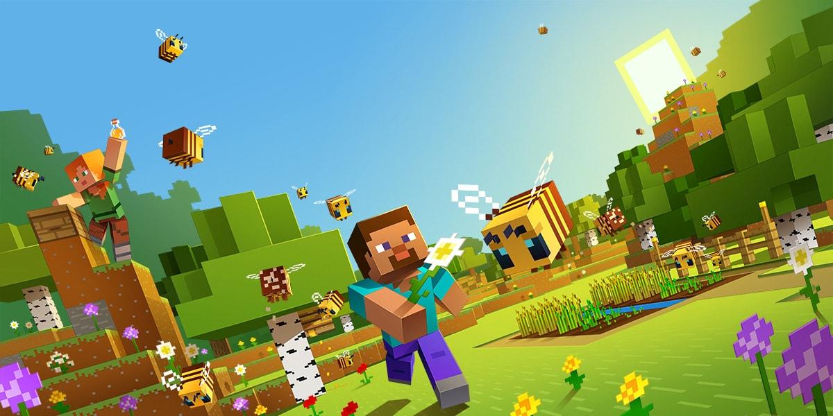Comment accéder à un serveur Minecraft privé? 11