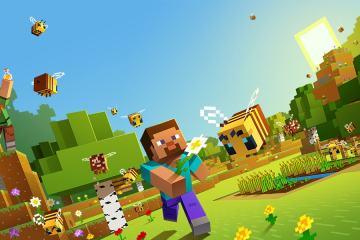 Comment accéder à un serveur Minecraft privé? 22