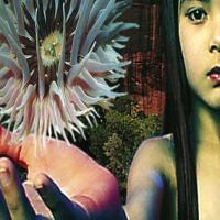 Bleep announce a reissue of Lifeforms by FSOL