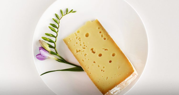 Dieci formaggi del Trentino Alto Adige  Dissapore