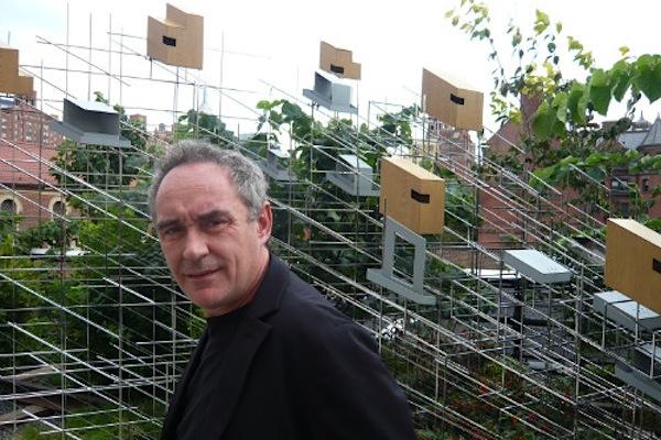 Ferran Adri mette all39asta tutti i vini di elBulli