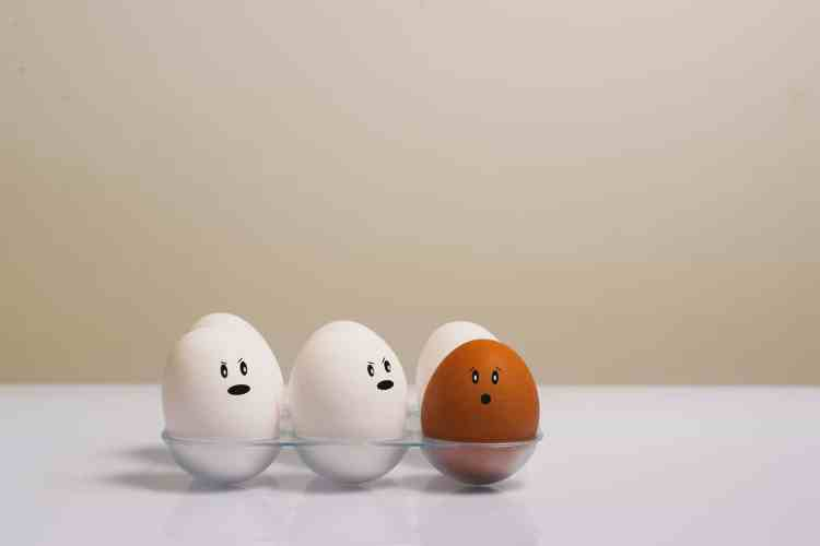 eggs-in-tray-on-white-surface-1556707