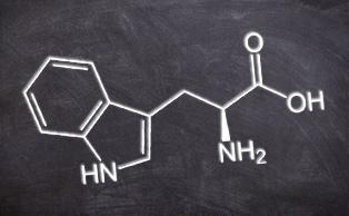 photo_article_sérotonine_mélatonine_tryptophane